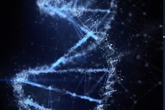 DNA-Galactic-Federation