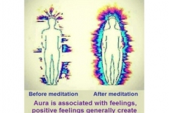 Vibrational-Frequency